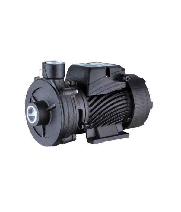Կենտրոնախույս ջրի մղման պոմպ 2DK-20 Pumpman